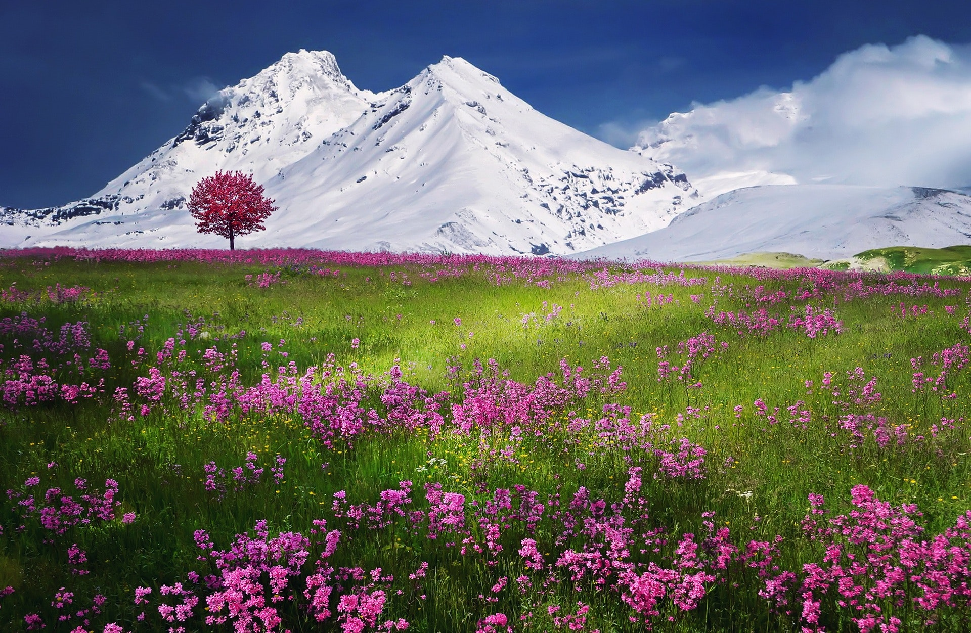 nature-wallpapers