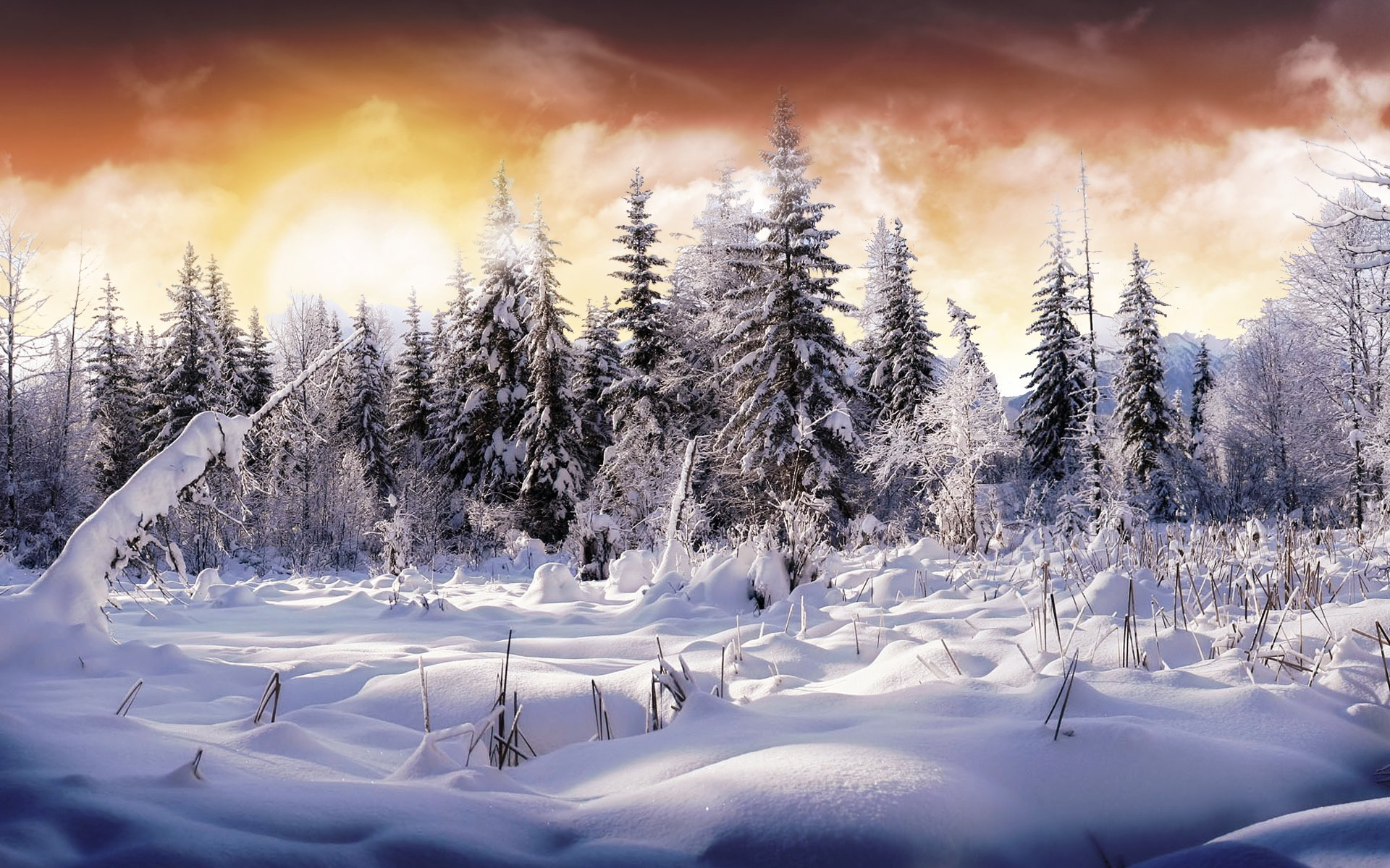 140 Winter Wallpapers: Super and Trend