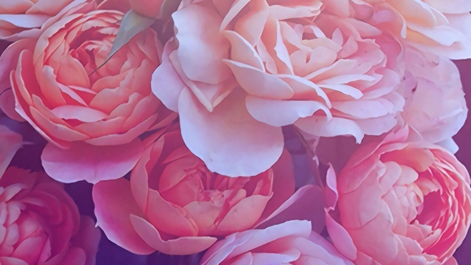 Beautiful and mesmerizing rose gold wallpaper