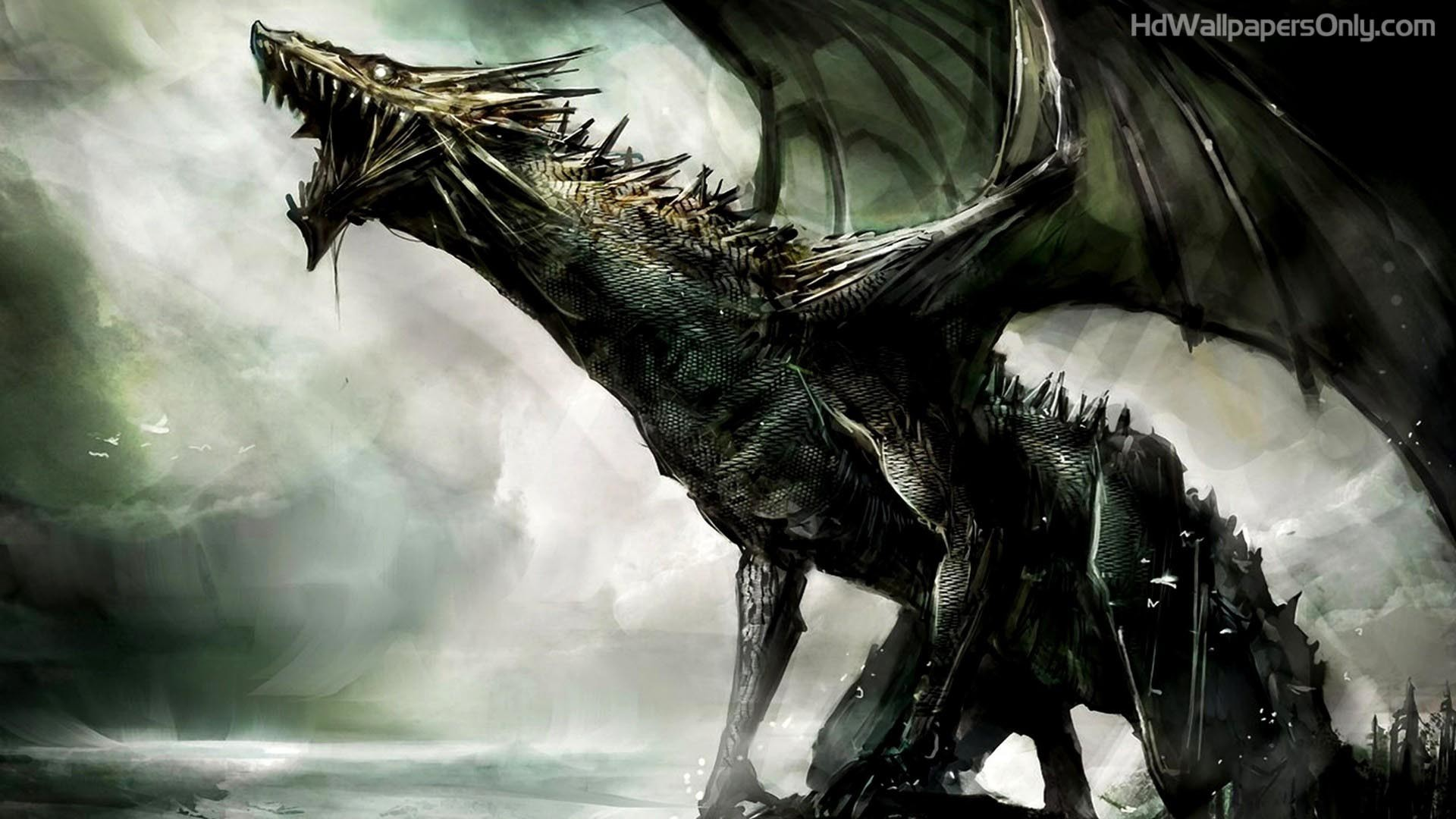 100+ Dragon HD Wallpaper Download For Background