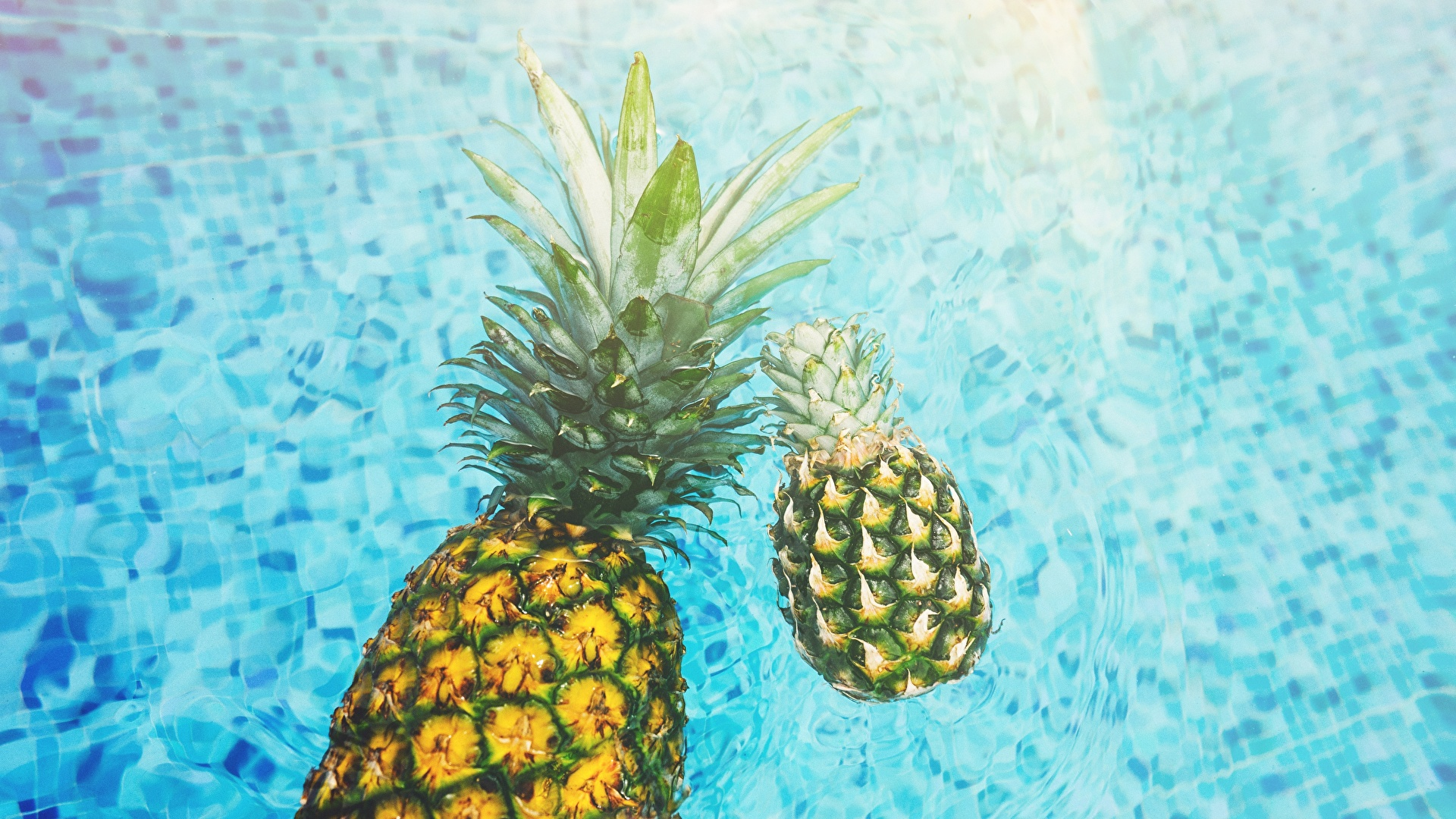 +90 The Awesome Pineapple Fruit Wallpaper For Desktop