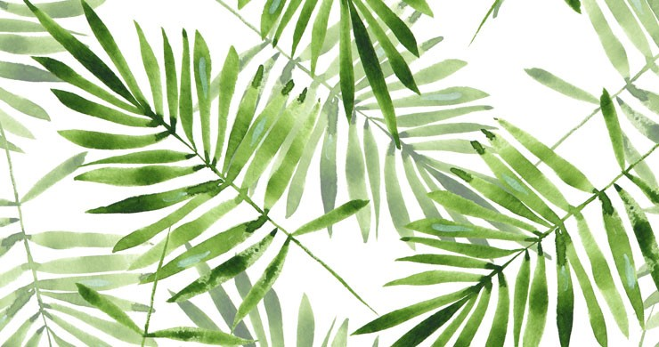 Different Kinds of Tropical Wallpaper