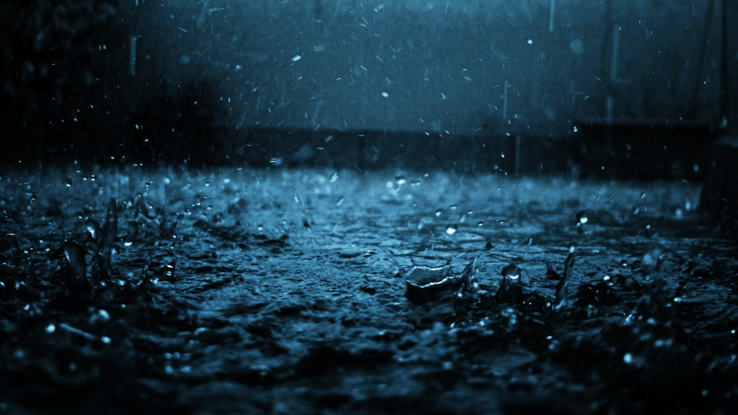 The Features of the Rain Photo Wallpaper