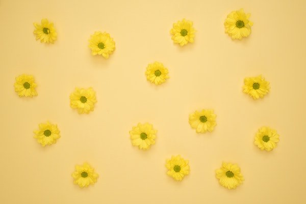 The Yellow Wallpaper Summary – An Introduction