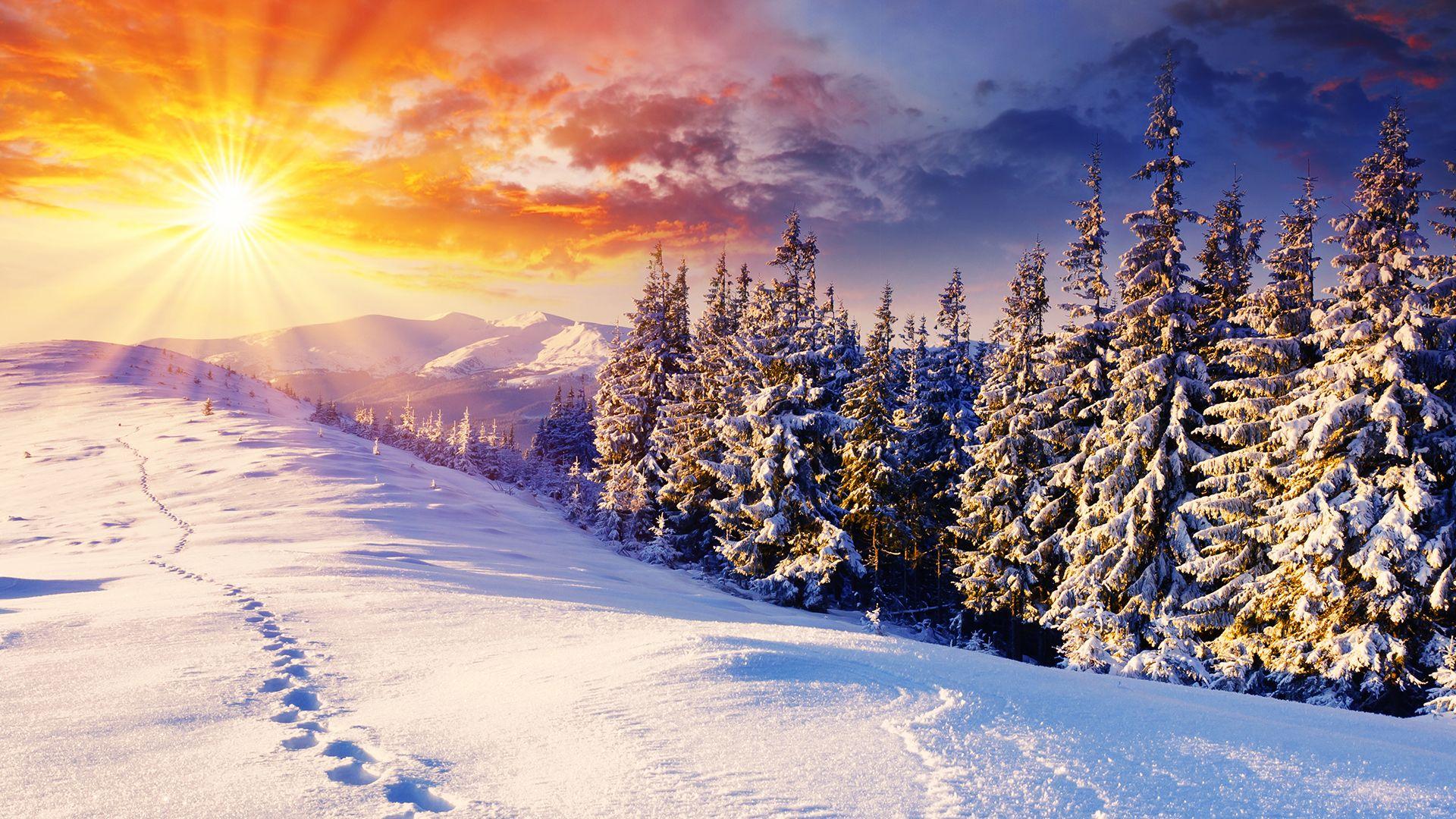 Winter Desktop Wallpaper – Why is it So Popular