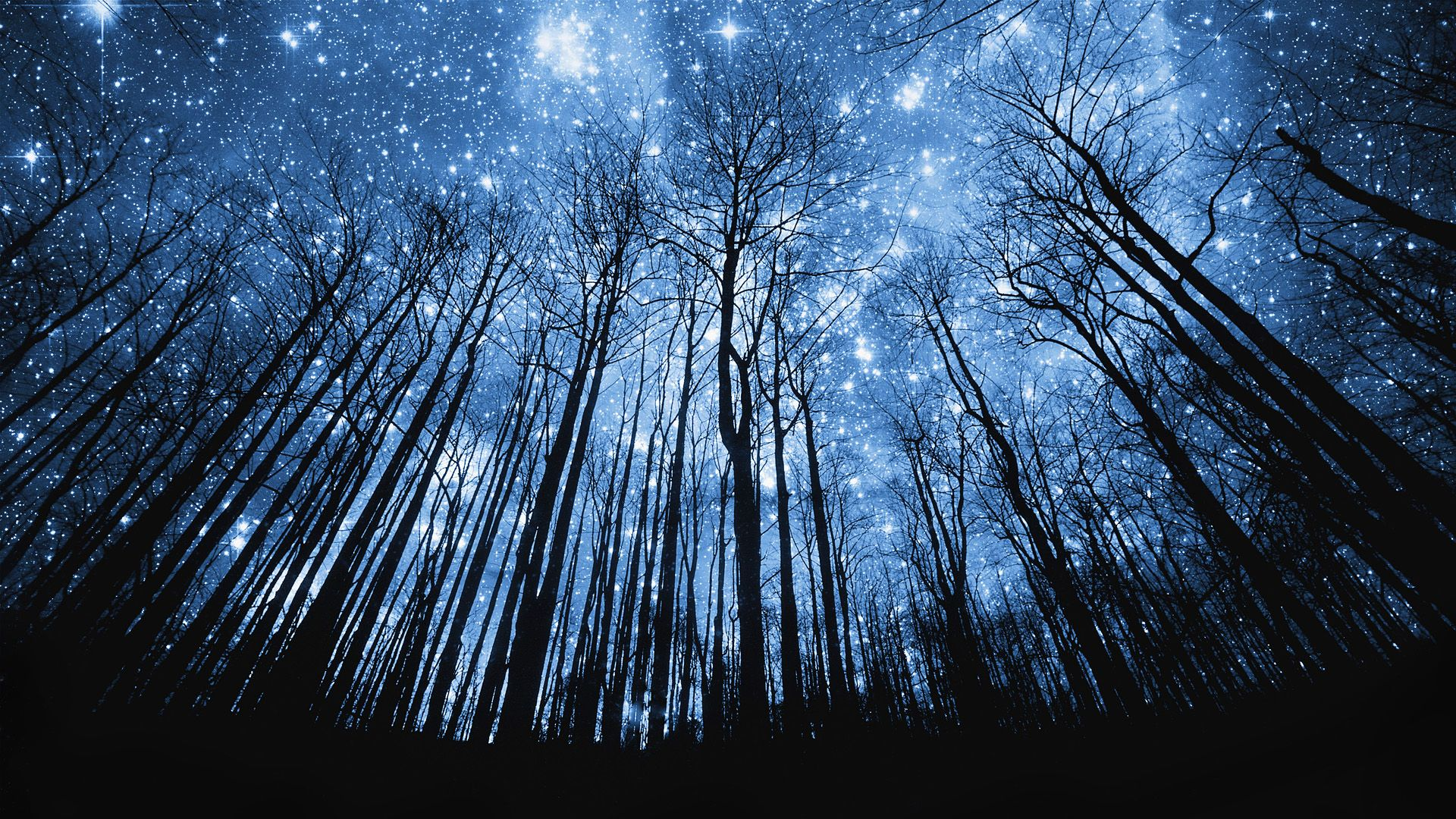 Attractive Night Sky Wallpaper For Desktop Background