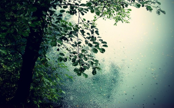Add Beautiful Rain Wallpaper to Your Windows With These Awesome Addons