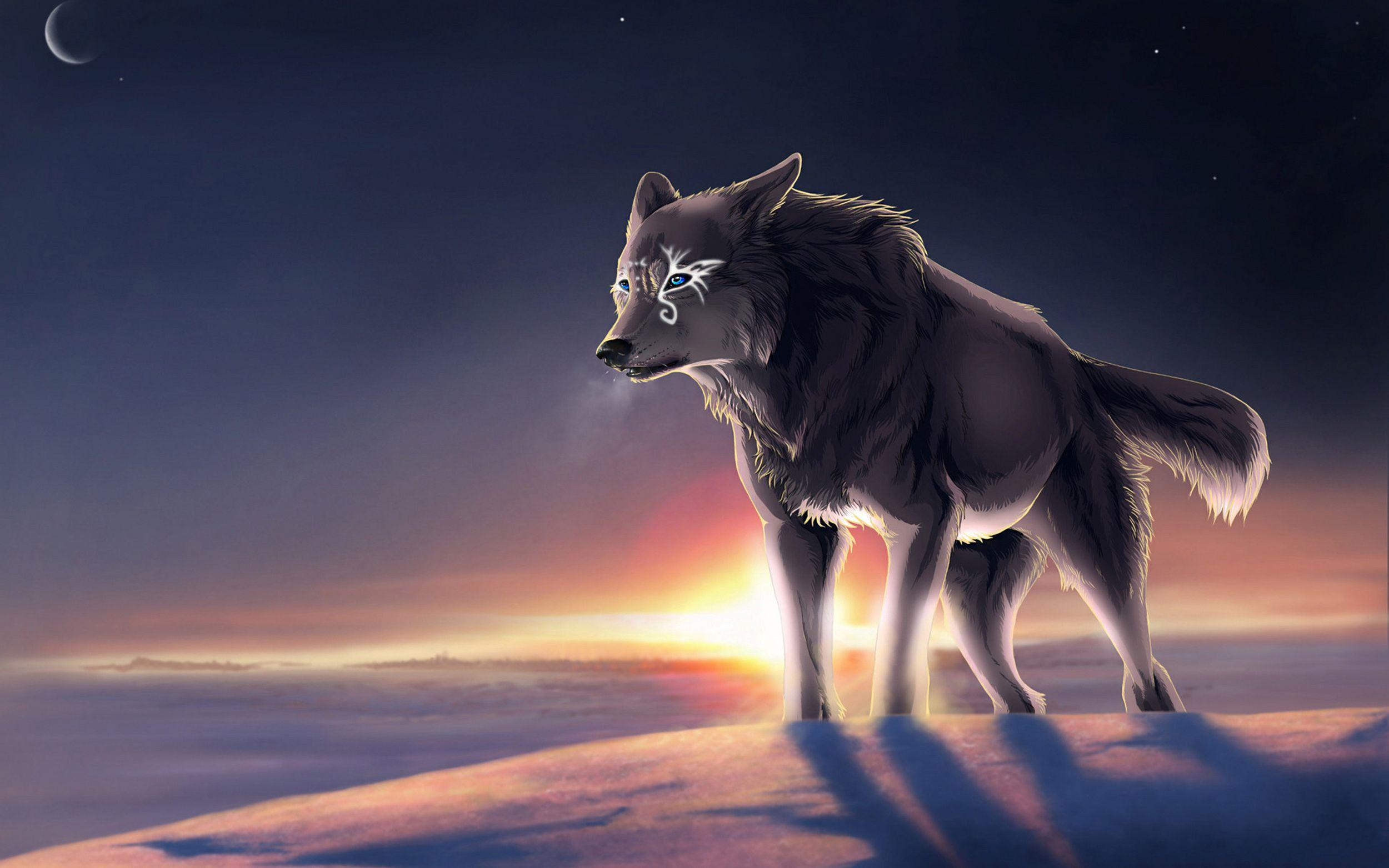 Finding Quality Anime Wolf Wallpaper Background for Your Desktop