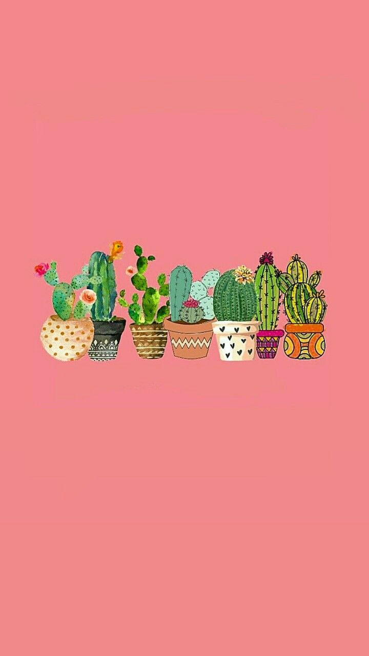 Top Cactus Wallpaper Ideas For Your iPhone