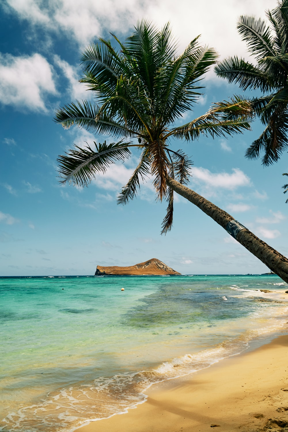Hawaii iPhone Wallpaper – How to Download Images For Your iPhone