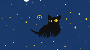 Black Cat Picture designs – The Ultimate Picture design For Your Computer