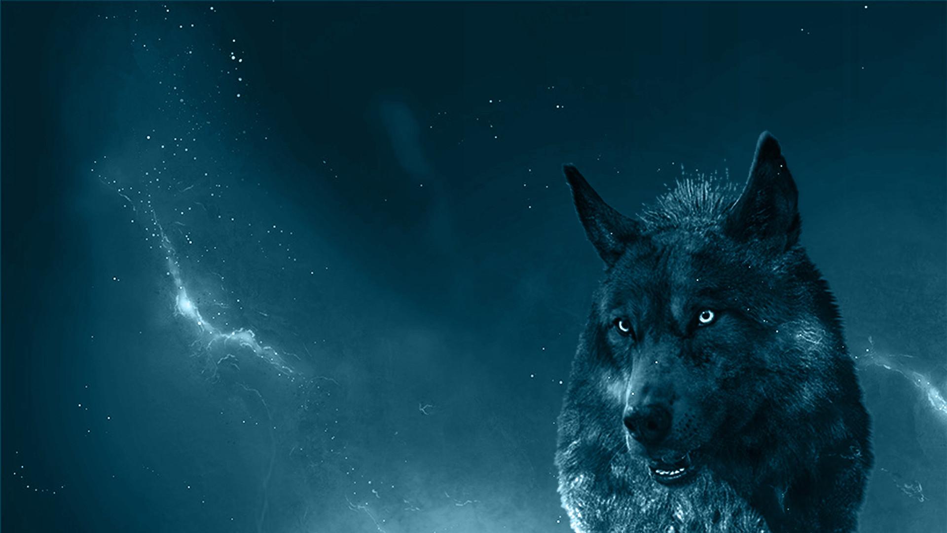 Blue Wolf Wallpaper – Newest wallpaper Design