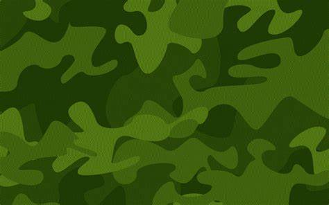 Give Your Room a Fresh Look With Camouflage Picture designs