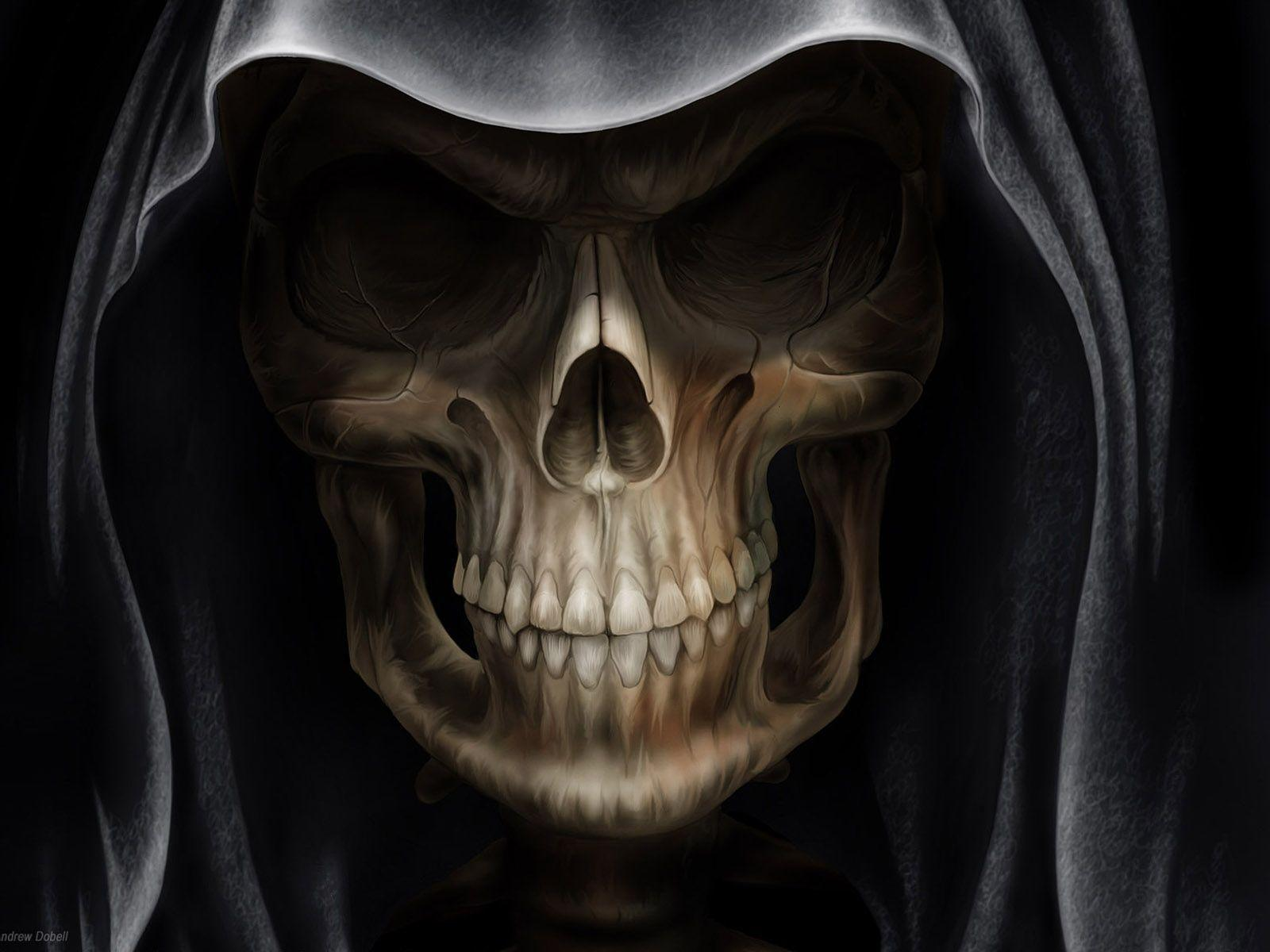 Cool Skull Picture designs For Your Computer