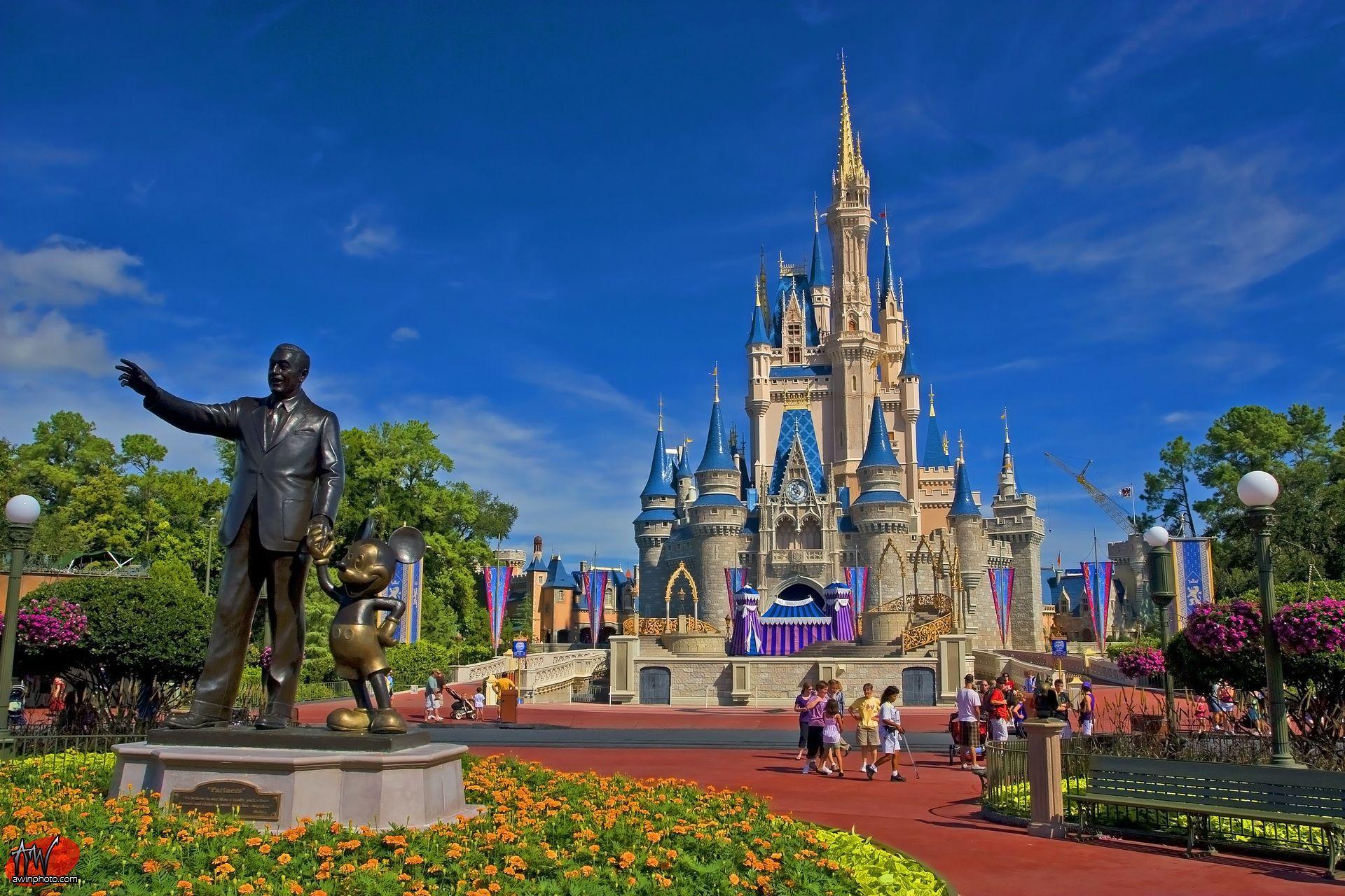 Disney World wallpaper design ideas