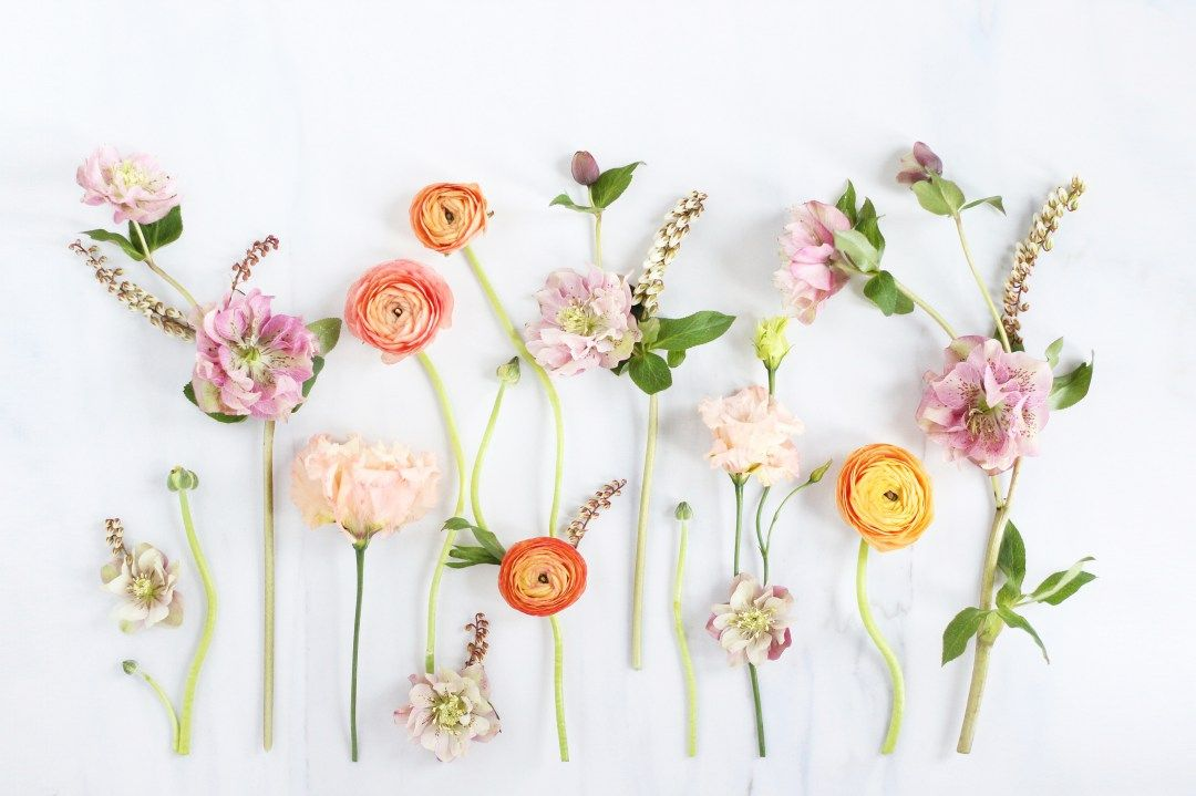 Floral Desktop wallpaper – Add Elegance to Your Workplace Today