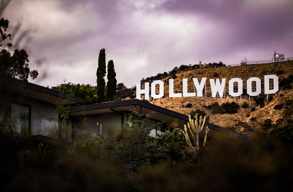 Hollywood wallpaper Pros and Cons – How to Use Wallpaper the Right Way