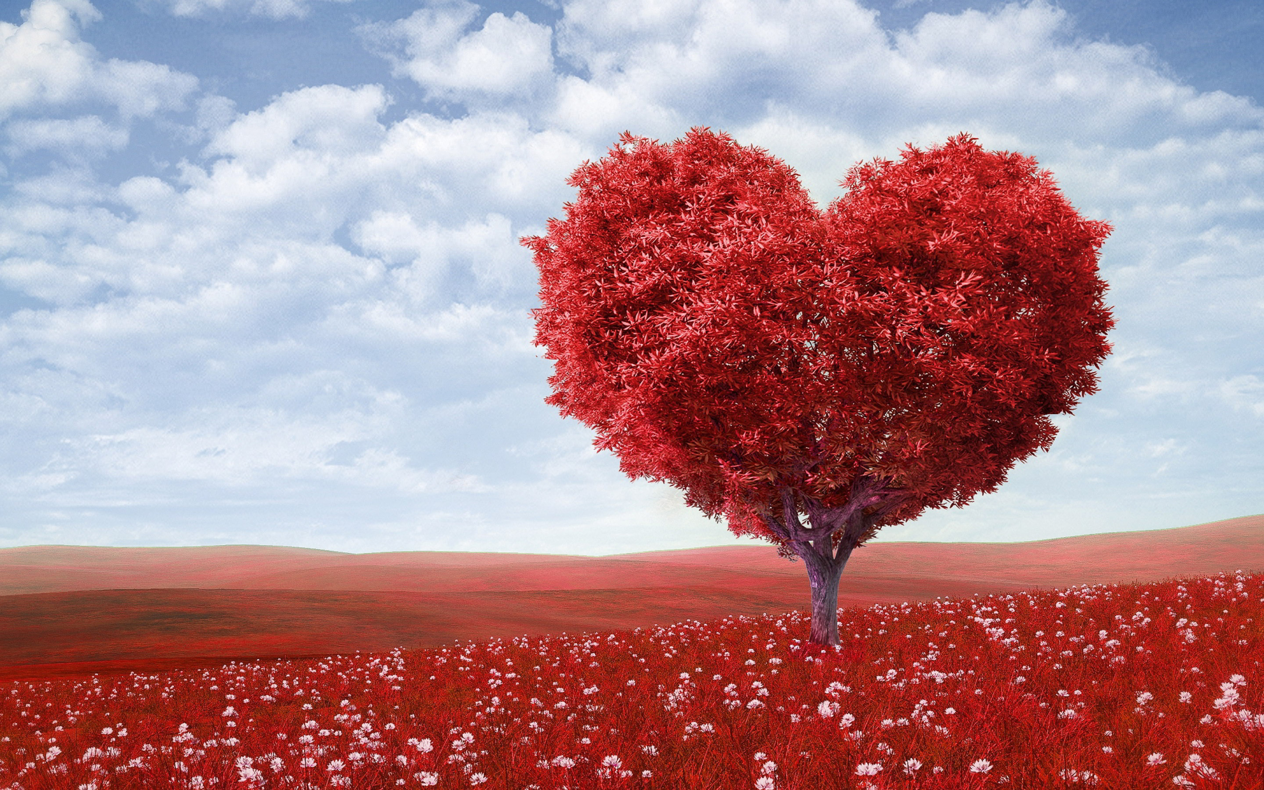 Make Your Home Beautiful With Love Images Background decoration