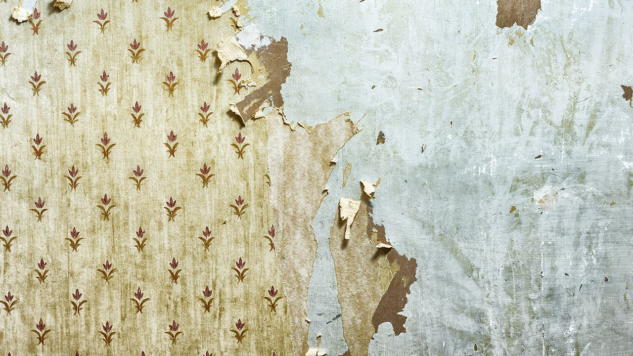 Top wallpaper Ideas – Peeling Wallpaper design ideas