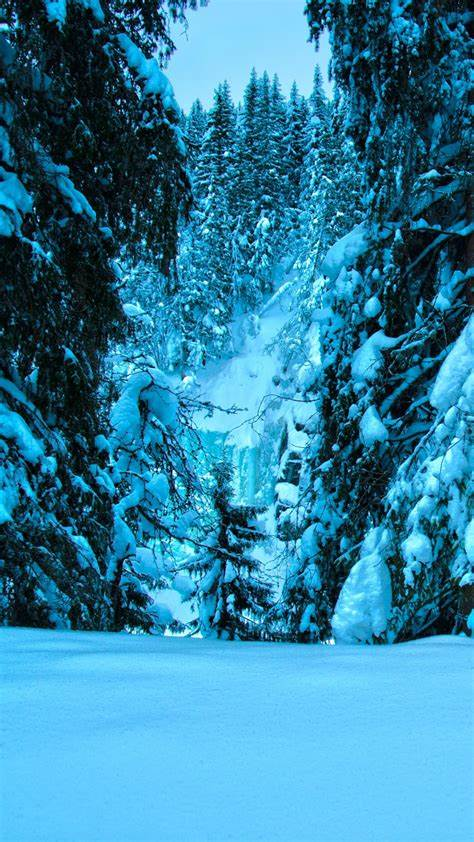 Snow Wallpaper Background for iPhone – Why You Need It