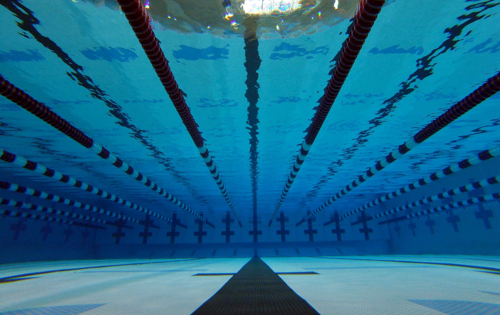 Swimming wallpaper – Exactly What Do You Need?