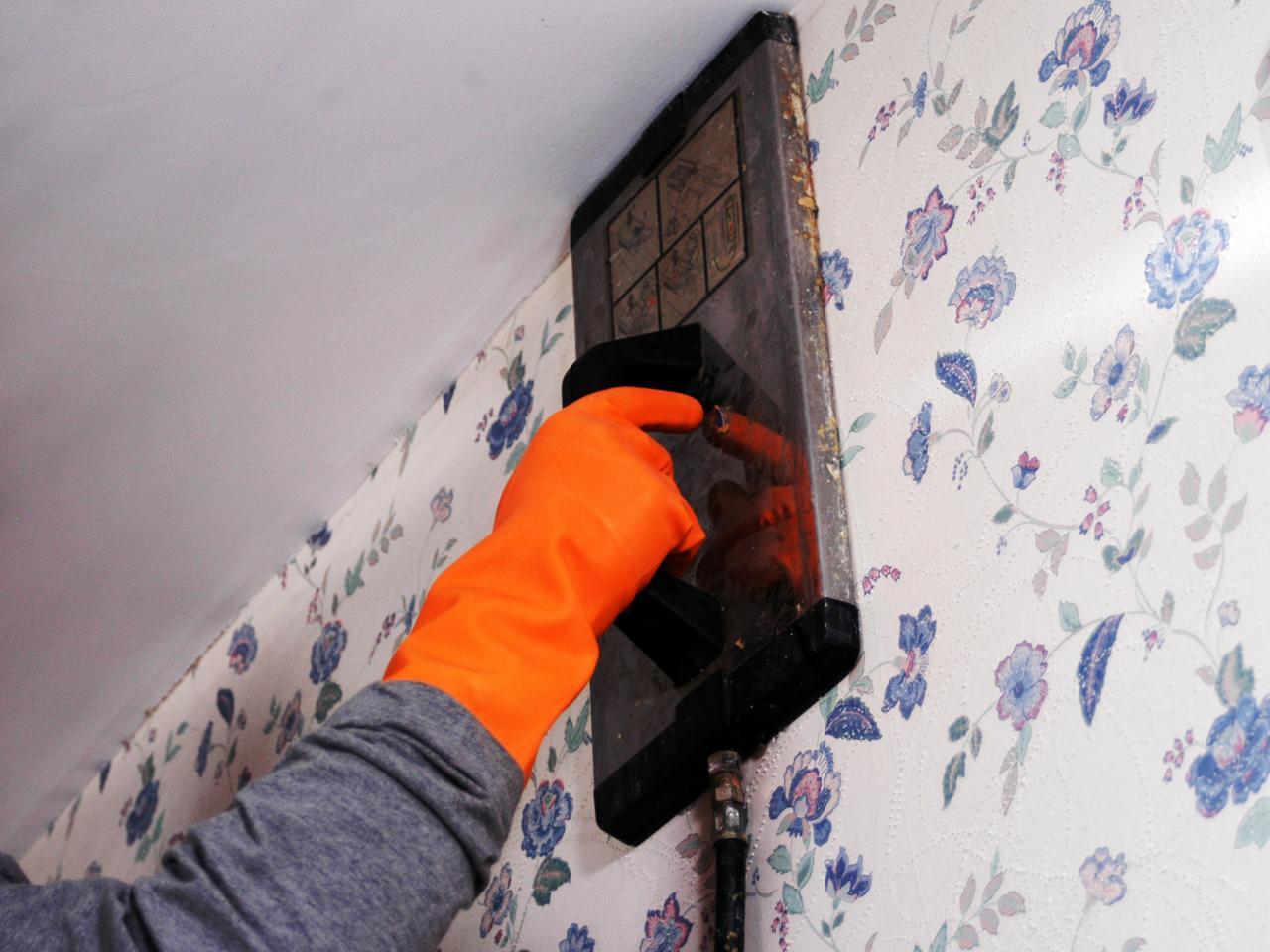 wallpaper removal steamer design ideas