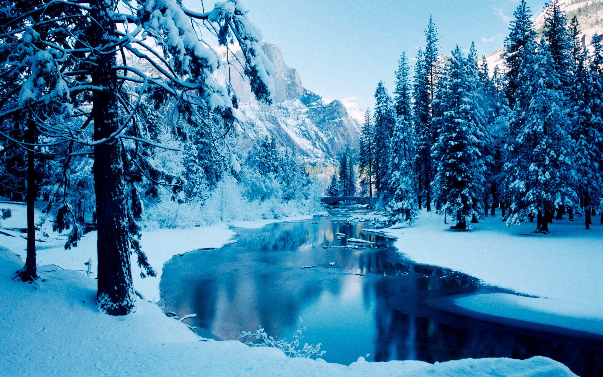 Winter Scene Wallpaper – An Inspiring Winter Wonderland