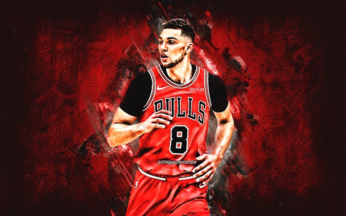 Home Decorating Ideas With Zach Lavine Wallpaper